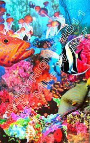 Reef #6, a collage of colorful fish by artist T Mike Walker